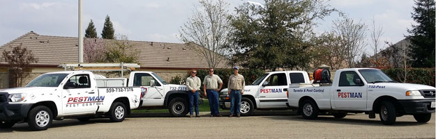 About Pestman Pest Control
